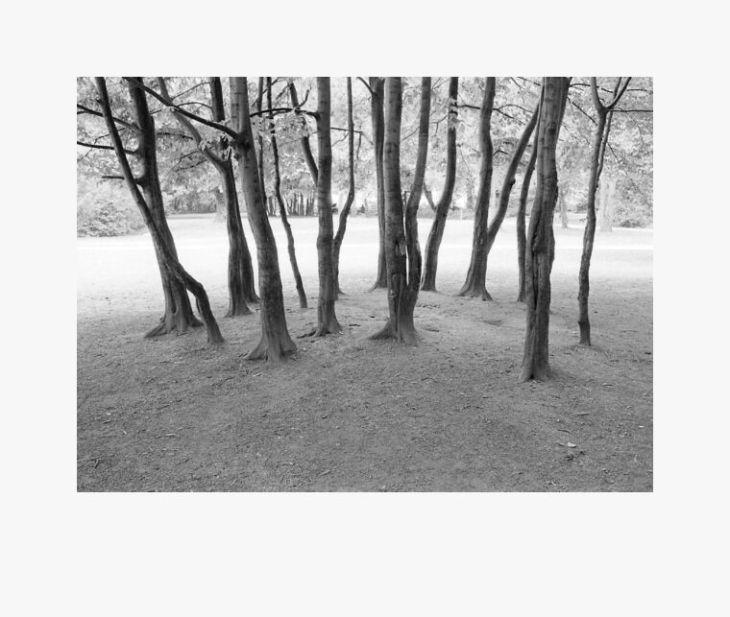 Park01